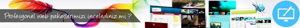 profesyonel-hazir-web-paketler-1
